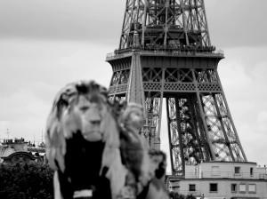 Paris La Tour Eiffel depuis le Pont Alexandre-III